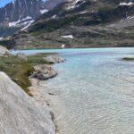 Patagonia Gauli
